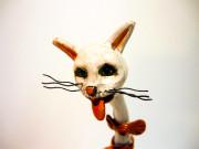 gatto b1